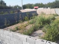 فروش باغ محوطه سازی شده 1600 متر در شهریار در شیپور