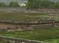 فروش فوری زمین مسکونی 250 متر در سلمان شهر در شیپور-عکس کوچک