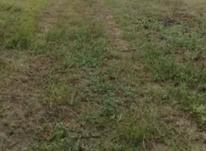 زمین فرمانداری 207 متر رودسر(خ35متری) در شیپور-عکس کوچک