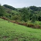 3000 متر زمین شهرستان آستارا، روستای مشند