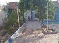 فروش باغ ویلا 250 متر در شهریار در شیپور-عکس کوچک