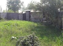 رودسر(حسین اباد)زمین207متر تجاری مسکونی در شیپور-عکس کوچک