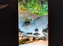 گوشی موبایل نوکیا C1 در شیپور-عکس کوچک