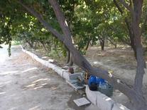 باغچه625متری دوکله با سند تک برگ عرصه عیان در شیپور