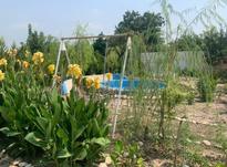 فروش زمین مسکونی 3000 متر در جویبار در شیپور-عکس کوچک