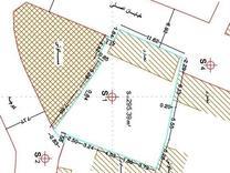 فروش زمین مسکونی و تجاری 295 متری در لنگرود در شیپور