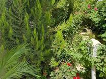 فروش باغچه  500 متری دارای استخر در شهریار در شیپور