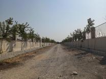 فروش زمین چهار دیواری 1000 متر در ملارد در شیپور