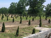فروش زمین مسکونی 300 متر قابل ساخت در شیپور