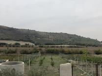 540 متر باغ در توسکستان در شیپور