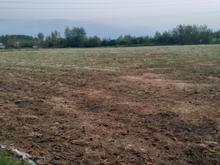 زمین کشاورزی پانزده هزار متر در شیپور