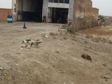 زمین 1000مترمربع در جاده اصلی بندرترکمن به آقلا در شیپور