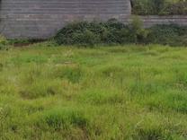فروش زمین مسکونی 155 متر در آستانه اشرفیه در شیپور