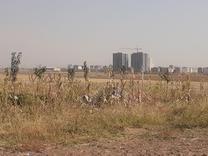 فروش زمین کشاورزی 6000 متر در محمدیه در شیپور