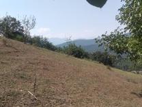 زمین باغی و خانه سرا الحاق به بافت در شیپور